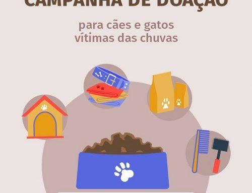 Semad e PMMG vão receber doações para cães e gatos vítimas da chuva em Minas